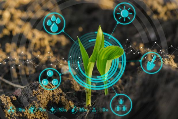 Polska może stać się liderem cyfryzacji w rolnictwie (wideo)