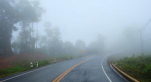 Pogoda na 8 października: Mgły i przelotne opady deszczu