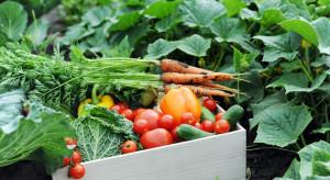 Copa-cogeca: Sektor owoców i warzyw doświadcza coraz większych kosztów produkcji i strat