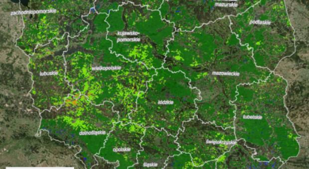 KOWR: Geoserwis Susza 2020 osiągnął pełną funkcjonalność