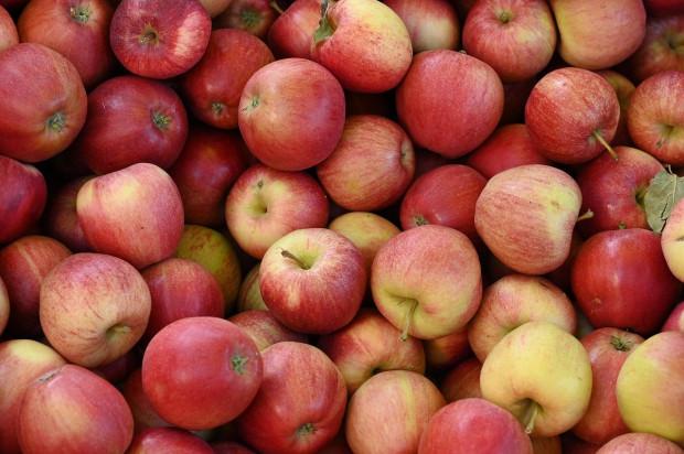 Serbia wkrótce ma ruszyć z eksportem jabłek do Indii