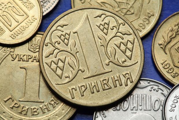 Ukraina: Rolnikom wypłacono ponad 70 mln UAH wsparcia
