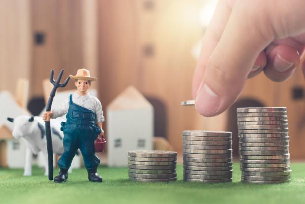 Badanie UE: Wsparcie finansowe udzielane rolnikom jest zbyt niskie