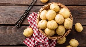 Ziemniaki – niedoceniony produkt w diecie wegańskiej