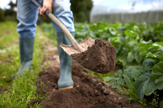 KRIR wyznacza priorytety działań dla upowszechnienia rolnictwa zrównoważonego