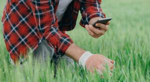 Aplikacja umożliwi identyfikację chwastów i chorób powodujących straty w plonach