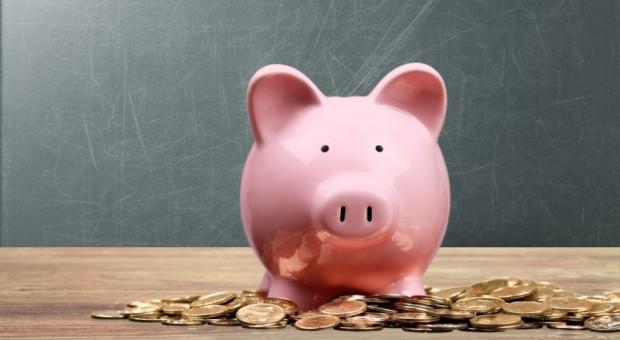 ARiMR: Wnioski o premię na rozpoczęcie działalności pozarolniczej od 29 października