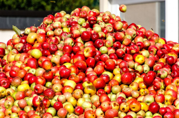 UOKIK o cenach jabłek: Nie ma podstaw uzasadniających podejrzenie istnienia zmowy