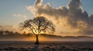 IMGW ostrzega przed gęstymi mgłami na Lubelszczyźnie i Mazowszu
