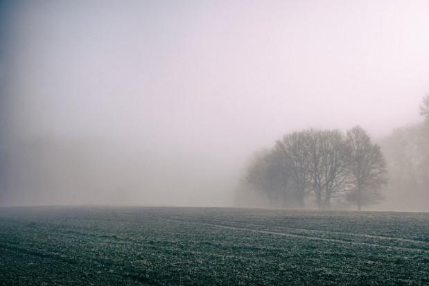 IMGW ostrzega przed gęstymi mgłami w weekend w 5 województwach