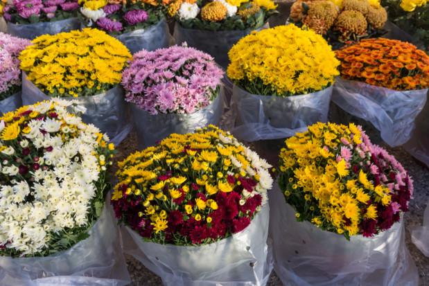 Bronisze: duży wybór kwiatów na groby, klientów mniej niż przed rokiem
