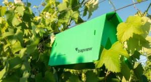 Kubota inwestuje w Trapview, firmę monitorującą obecność szkodników