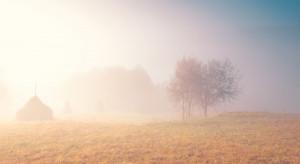 IMGW ostrzega przed gęstymi mgłami i intensywnymi opadami deszczu