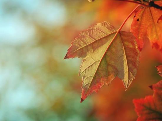Prognoza pogody na 2 i 3 listopada