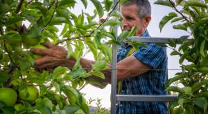 Składka zdrowotna za pomocnika rolnika nie ulegnie proporcjonalnemu zmniejszeniu
