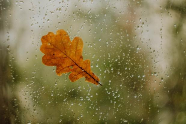 Pogoda na 3 listopada: Będzie pochmurno i deszczowo