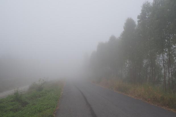 IMGW ostrzega przed gęstymi mgłami w czterech województwach