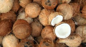 Indonezja: Studenci uczelni na Bali mogą opłacać czesne kokosami
