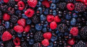 Jak komunikować się by być zrozumianym i aby sprzedawać owoce? (wideo)