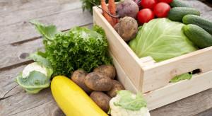 Pandemia nie wpłynęła na osłabienie dynamiki rozwoju branży żywności ekologicznej