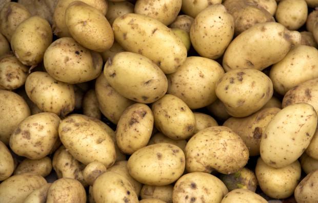 MRiRW o pomocy producentom ziemniaków w ramach kryzysu COVID-19