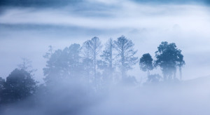 IMGW ostrzega przed gęstymi mgłami w nocy na Mazowszu i Lubelszczyźnie