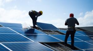 IEO: rośnie zainteresowanie farmami fotowoltaicznymi