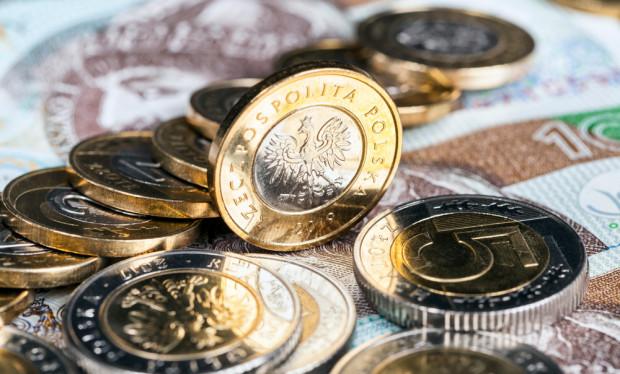 ARiMR wypłaciła 9 mld zł na poczet zaliczek dopłat bezpośrednich