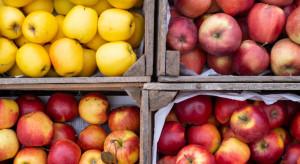 Węgry: Mniejsze zbiory wpłynęły na wzrost cen jabłek