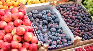 Mołdawia: Rolnikom łatwiej sprzedać owoce za granicą niż do krajowych sklepów
