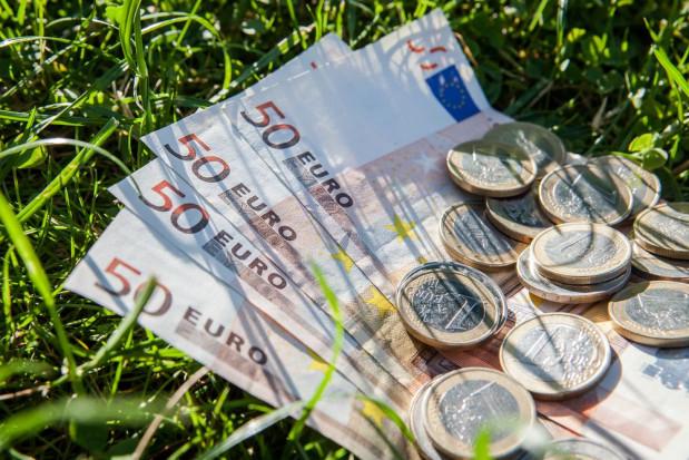 MRiRW: 10 mld zł zaliczek dopłat bezpośrednich na kontach rolników
