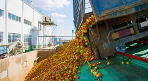 Ceny jabłek przemysłowych stoją w miejscu. Czy przewidywane są spadki?