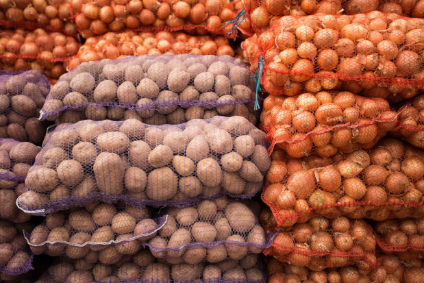Ukraina importuje ziemniaki z Polski i Holandii