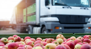 Radom: Zatrzymano ciężarówkę przeładowaną jabłkami