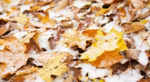 Pogoda na wtorek: Zachmurzenie duże, w górach spadnie śnieg