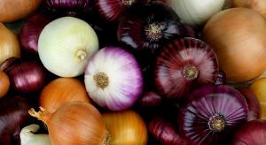 Polska na 9. miejscu wśród światowych eksporterów cebuli