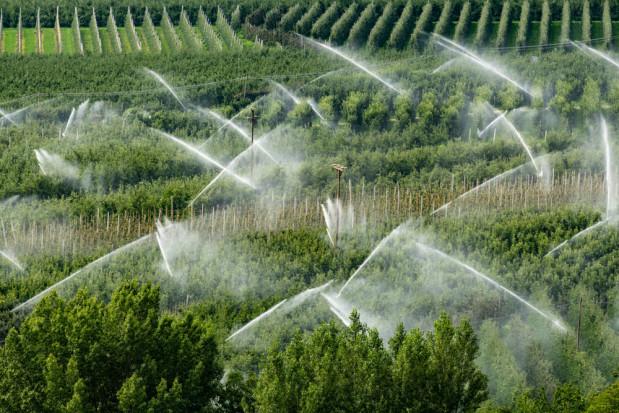 Inwestycje w nawadnianie gospodarstw - 30 listopada rusza nabór wniosków