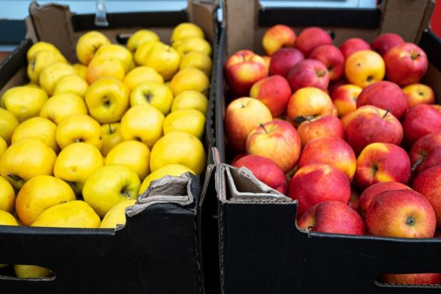 Brak uregulowań prawnych dot. opakowań wyzwaniem dla sektora warzywno-owocowego