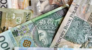 ARiMR: Prawie 10 mld zł wypłacone w ramach zaliczek dopłat bezpośrednich