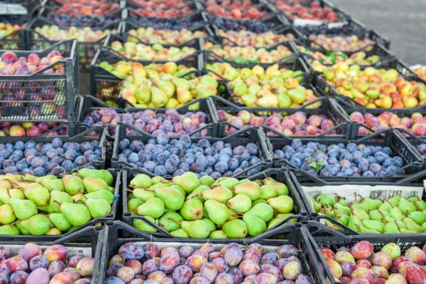 Austria: Lockdown negatywnie wpływa na handel owocowo-warzywny na rynkach hurtowych