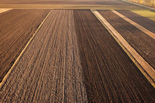 Rząd planuje wstrzymać sprzedaż nieruchomości rolnych na następne pięć lat