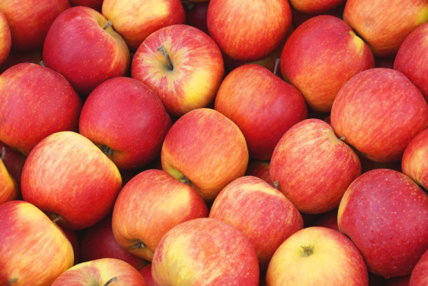 Sezon jabłkowy 2020 - jak sprawić aby nie zakończył się nieuzasadnioną obniżką cen?