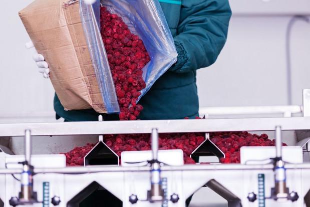 Rynek pracy: Zapotrzebowanie na pracowników z Ukrainy m.in. w przemyśle spożywczym