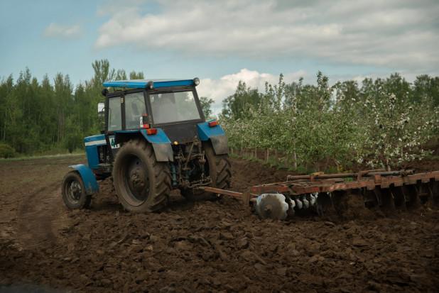 Pieniądze na rozwój usług rolniczych - ruszył nabór wniosków