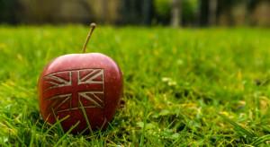 Brexit szansą dla brytyjskich sadowników?