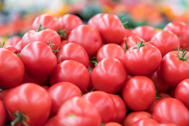 Bronisze: Ceny krajowych pomidorów malinowych bardzo wysokie - nawet 17 zł/kg