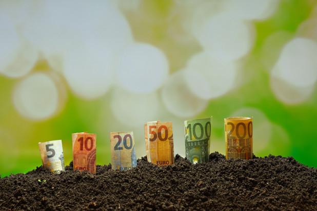 Różne kwoty zaliczek dopłat bezpośrednich? ARiMR wyjaśnia