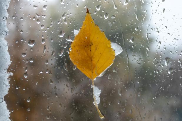 Pogoda na 9 i 10 grudnia: Spadnie deszcz ze śniegiem