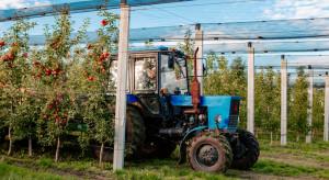 Licytacje maszyn rolniczych cieszą się dużym zainteresowaniem