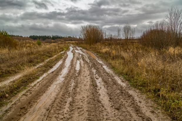Zarząd K-PIR: Zakaz sprzedaży ziemi państwowej nie spełnił oczekiwań rolników